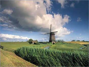 Holland19