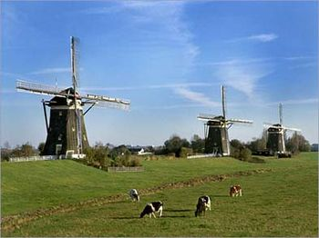 Holland21