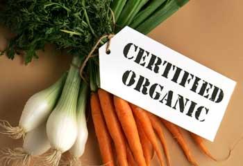 Organic3