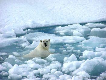 Globalwarming13