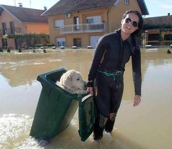 Floodbalkans
