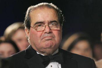 Scalia1