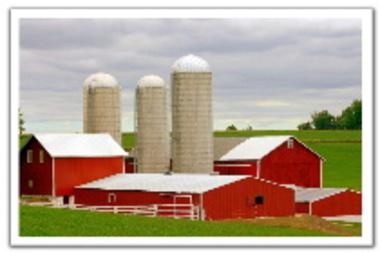 Farm1_3