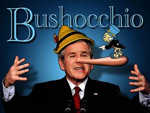 Bush1_1