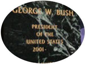 Bush7